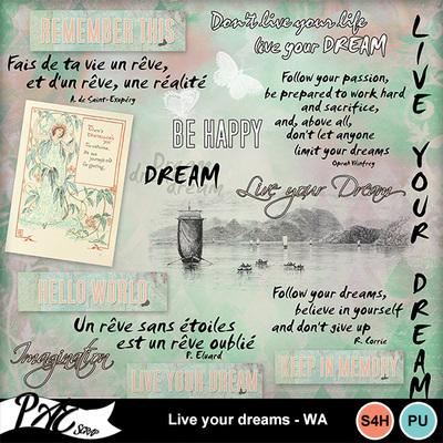 Patsscrap_live_your_dreams_pv_wa