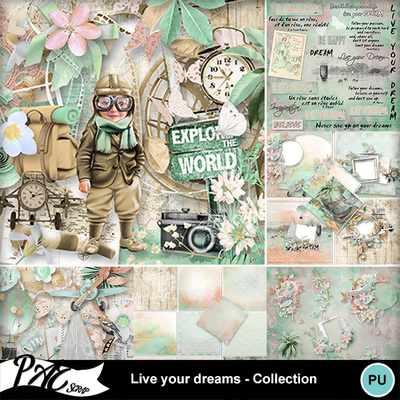 Patsscrap_live_your_dreams_pv_collection