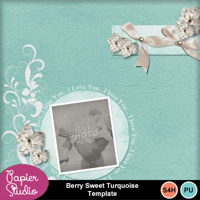 Barry_sweet_turquoise_template
