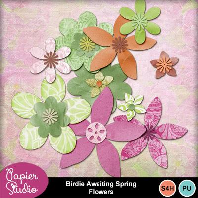 Birdie_awaiting_spring_flowers