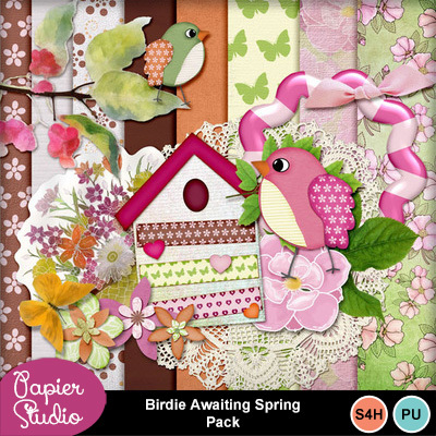 Birdie_awaiting_spring_pack