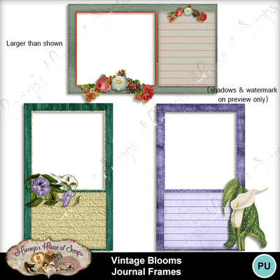 Journal_frames_preview