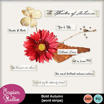 Bold_autumn_word_strips