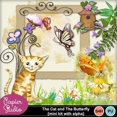 Thecat_butterfly