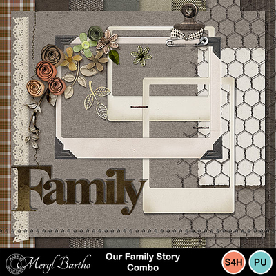Ourfamilystory-combo