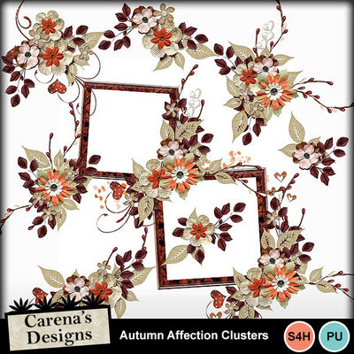 Autumn-affection-clusters