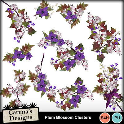 Plum-blossom-clusters