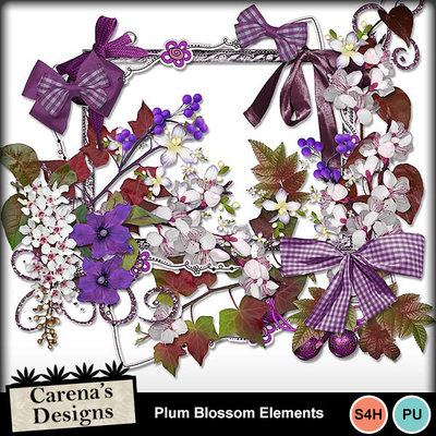 Plum-blossom-elements