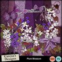 Plum-blossom_small