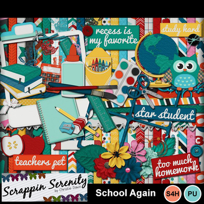 Schoolagain-1