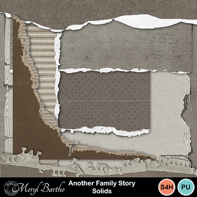 Anotherfamilystory-torn