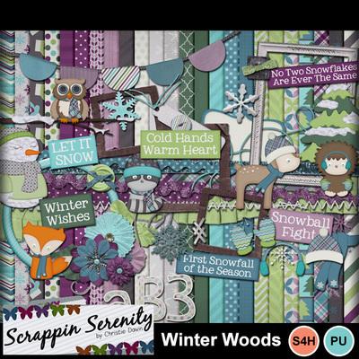 Winterwoods-1