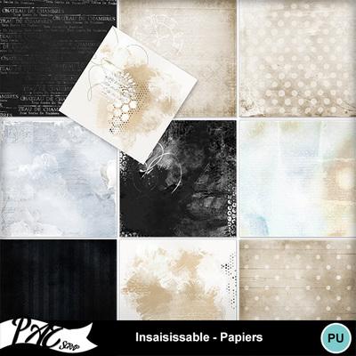 Patsscrap_insaisissable_pv_papiers