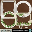 Summer_wedding_frames-01_small