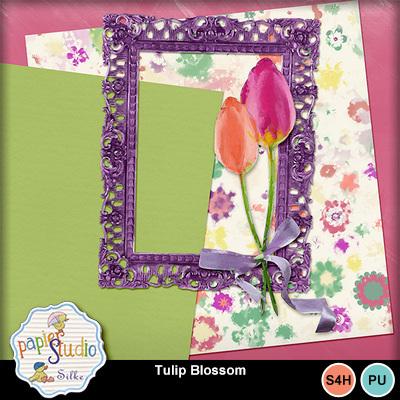 Tulip_blossom