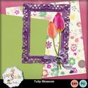 Tulip_blossom_small