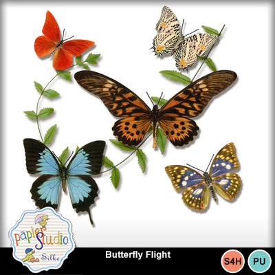 Butterfly_flight