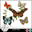 Butterfly_flight_small