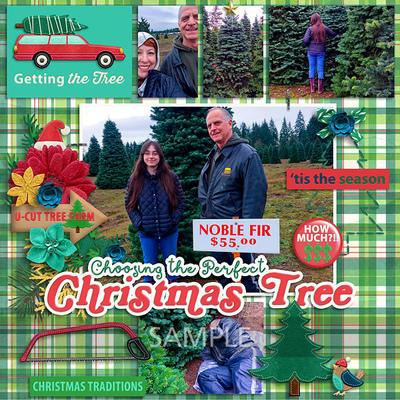 20161204-get-xmas-tree1