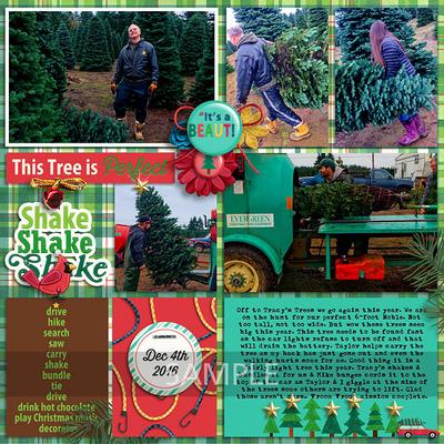 20161204-get-xmas-tree2