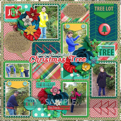 Lynnettewd-gettingthetree