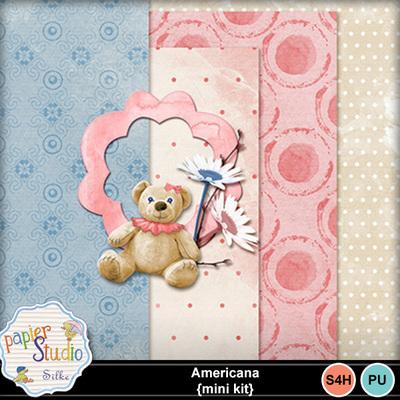 Americana_mini_kit