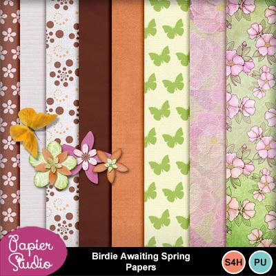 Birdie_awaiting_spring_papers