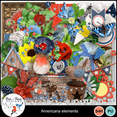 Americana_ele