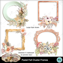 Frames_preview_small