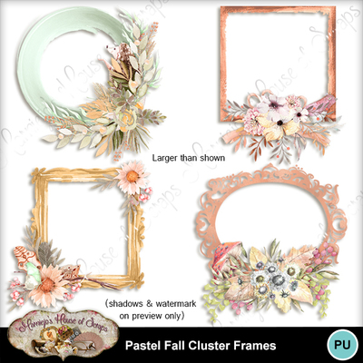 Frames_preview