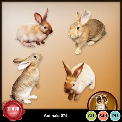 Animals075