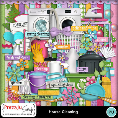 House_cleaning_1
