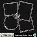 Speckled_cluster_frame-01_small