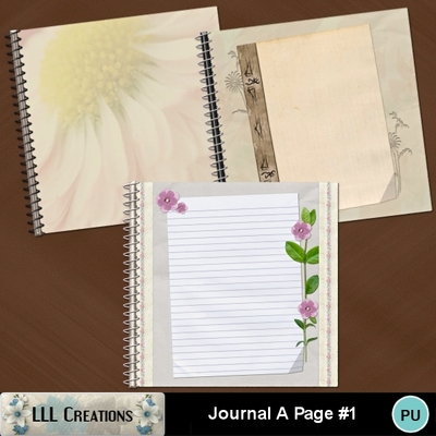 Journal_a_page_1-01