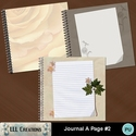 Journal_a_page_2-01_small
