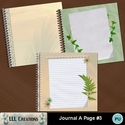 Journal_a_page_3-01_small