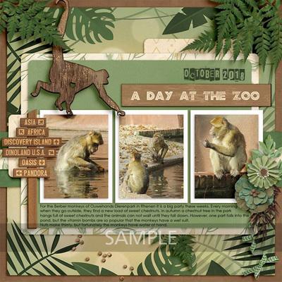 Animal-park-17