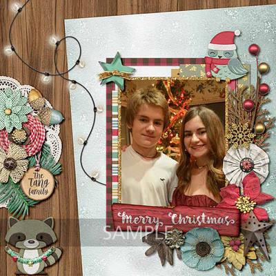 Christmas-wonderland-10
