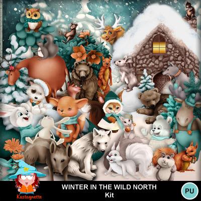 Kastagnette_winterinthewildnorth_pv