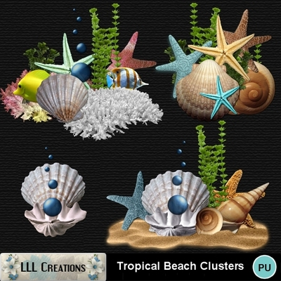 Tropical_beach_clusters-01