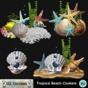 Tropical_beach_clusters-01_small