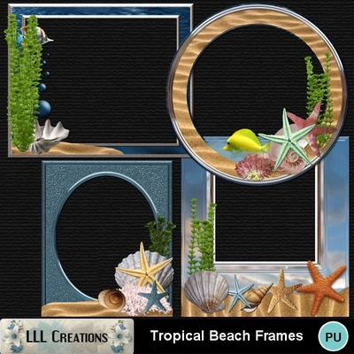 Tropical_beach_frames-01