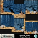 Tropical_beach_deluxe_papers-01_small