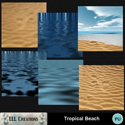 Tropical_beach-02