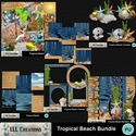Tropical_beach_bundle-01_small
