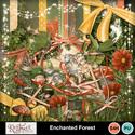 Enchanted_small