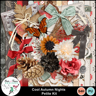 Coolautumnnights_petite_all