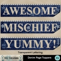 Denim_page_toppers-01_small