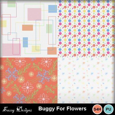 Buggyforflowers_2