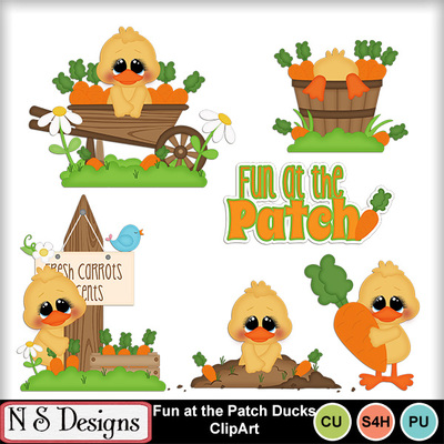 Fun_at_the_patch_ducks_ca
